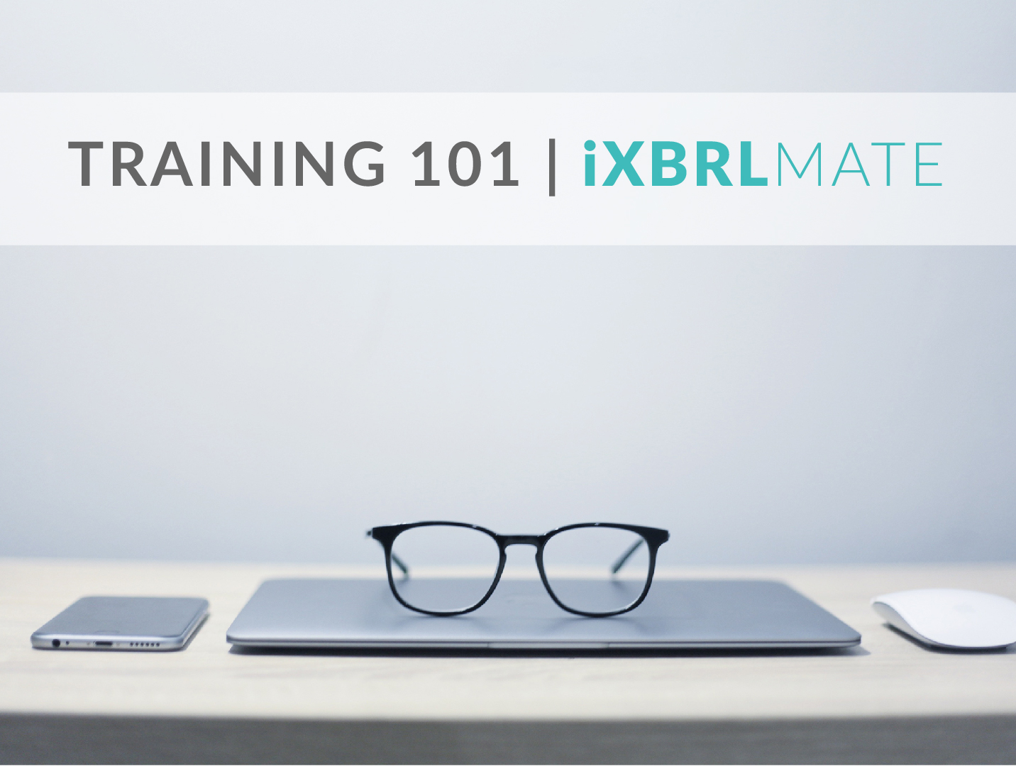 Watch Now – iXBRL Mate Web App Training
