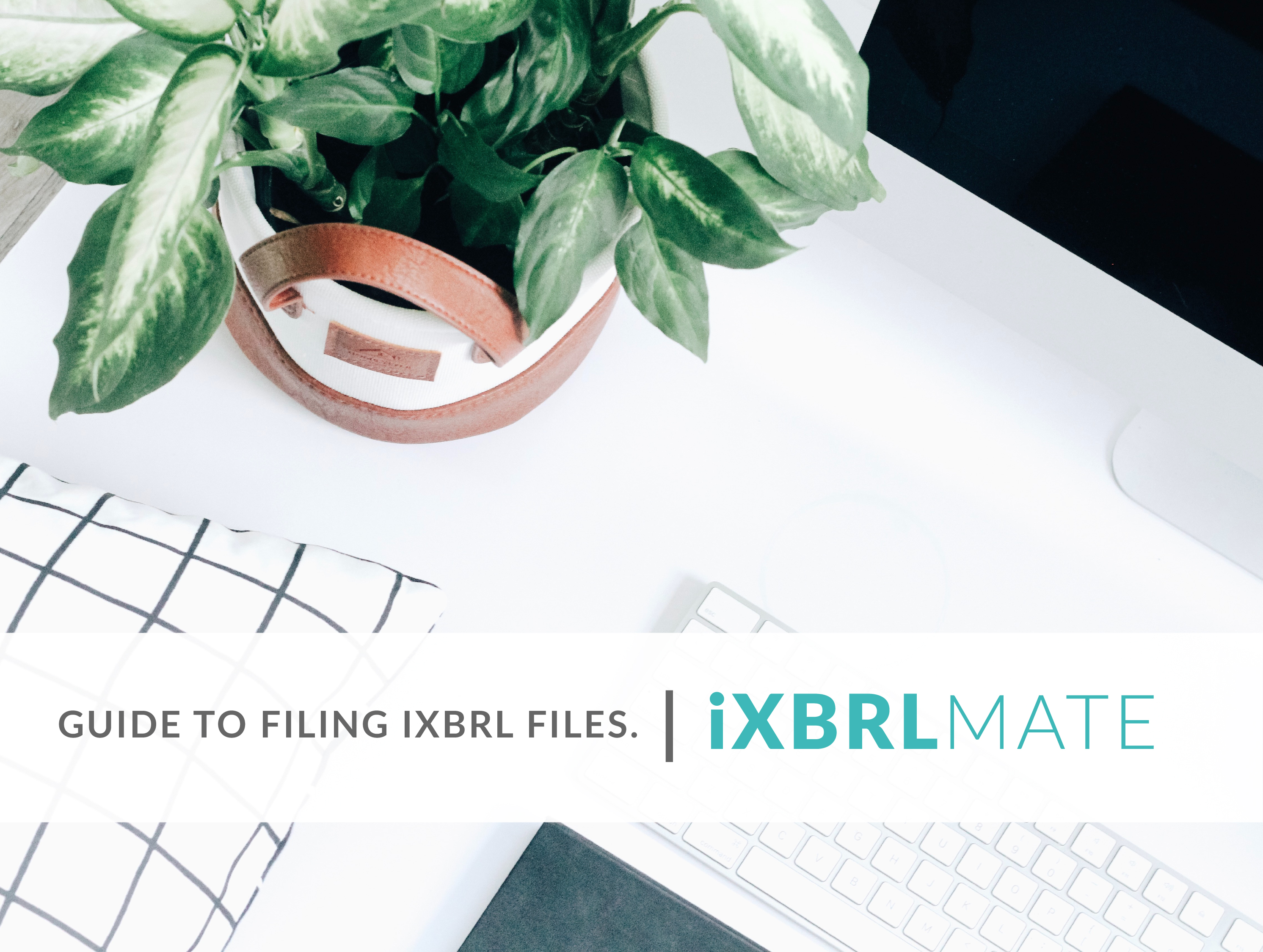 Guide to Filing AFS in iXBRL Format
